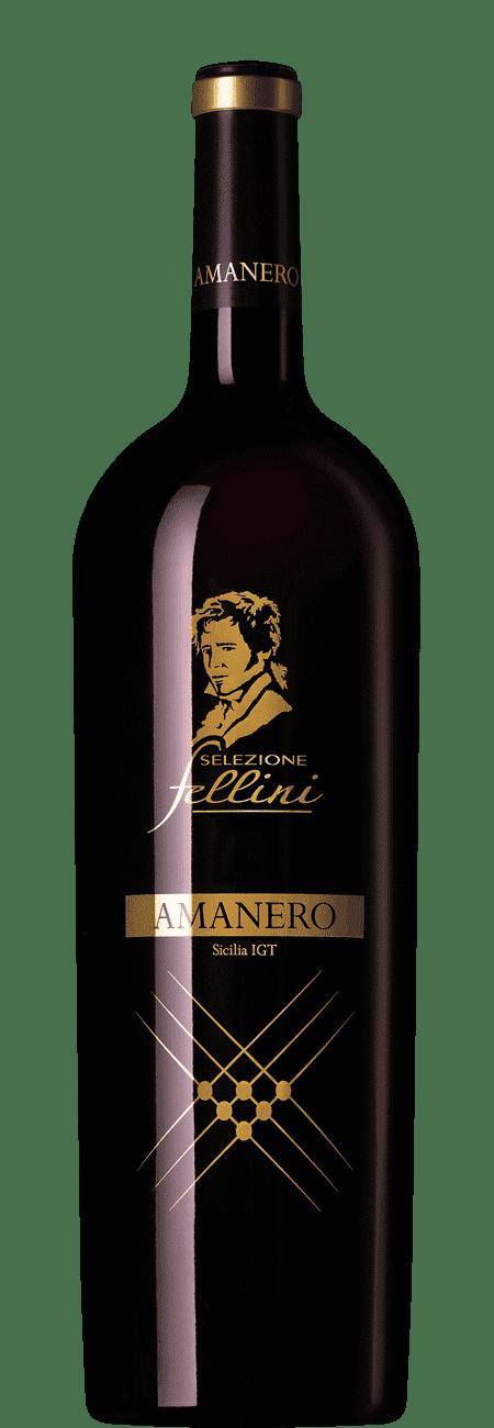 Selezione Fellini Amanero 2014